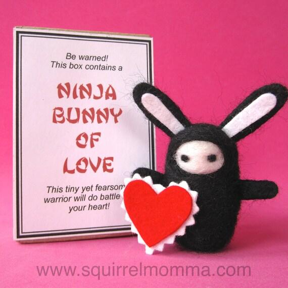 Ninja Bunny of Love with Box