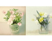 Flower Print Set,  Still Life Photographs, Floral Art Prints,  Shabby Chic Wall Decor, Pastel Wall Art Set, Cottage Chic Art