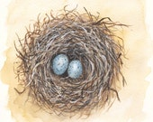 Birds Nest Print of an original watercolor painting