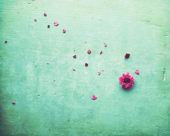 Zen art, floral still life, pink flower petals, large wall art, mint aqua green decor,  fine art photography, oversized art  'Petals'