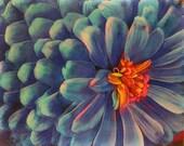 Zinnia, in blue, Floral, 16x20 inches, art, original, mixed media photograph, garden, blue flowers, modern, wall art