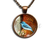 Blue Jay Bird - Round Glass Dome Pendant Necklace by IMCreations - AN119