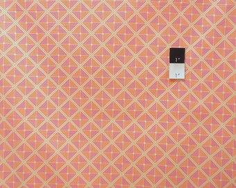 Joel Dewberry PWJD059 Notting Hill Frames Tangerine Cotton Fabric 1 Yard