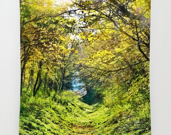 Forest Tapestry, Tree Tapestry, In The Woods, Botanical Large Wall Decor, Photo Tapestry, Modern Decor, Wall Hanging, Nature, Green Tapestry