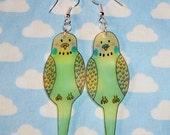 Tweet tweet how sweet green and yellow budgie earrings