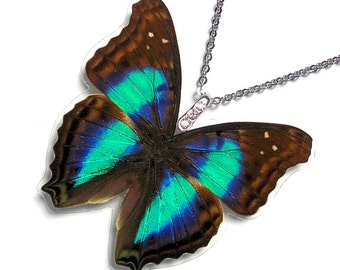 Real Butterfly Wing Necklace / Pendant (WHOLE Iridescent Cherubina Butterfly - W040)