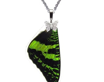 Real Butterfly Wing Necklace (Sunset Moth Forewing - N004)