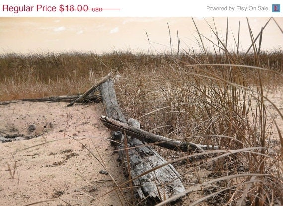 REDUCED Summer's End, Photo Notecards, Six Cards, Beach Surf, Table and Chair, Beach Grass, Driftwood Log