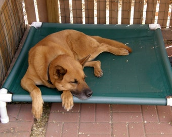 Orthopedic Bed, Dog Bed, Elevated Cot, Raised Bed, Cat Bed, 8 MESH COLORS 36x36x8  Small To Medium Dogs Up To 80 Pounds.