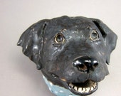 Wanna Play...Dog bust for the wall