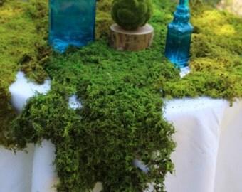 Moss-Preserved Sheet Moss-Delicate Thuidium Fern Moss-Qt Bag of REAL moss sheets-Floral supplies-Wedding supplies