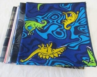 Cloth Napkin Set of Lunchbox Napkins #5