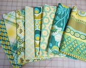 Fat Quarter Set of 8, Joel Dewberry fabrics, Notting Hill fabrics