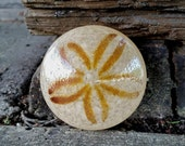 Glass Sand Dollar, Solid ...