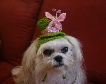 NEW - Mini Sparkle Top Hat for dog, cat -Butterfly-MADE To ORDER-need measurement- Humorous - up 20 lb pets