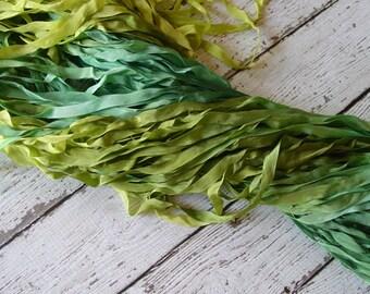 Hand Dyed Ribbon - NeW - GRASSLAND quarter inch wide ribbon, 5 yards