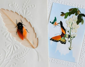 two Chinese straw insect butterfly cards, no envelopes