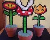 Mario Plant Set