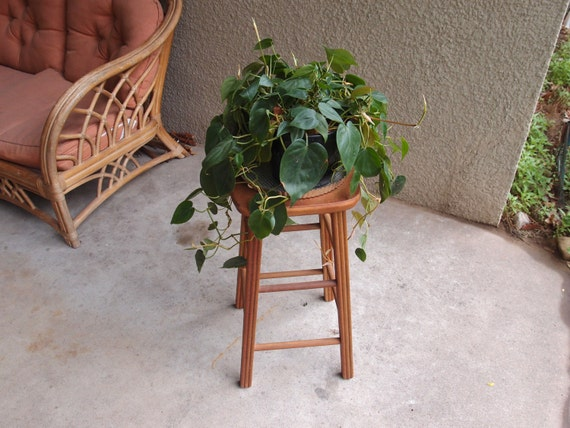 Vintage stool plant stand wooden solid wood mid by