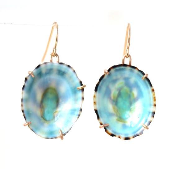 Limpit Shell Earrings
