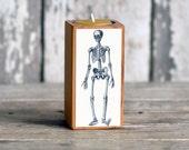 Medical Candleblock: No. 1, Smokestack Skeleton - by Peg and Awl