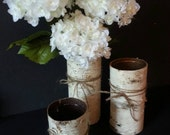 Birch Bark Vases set of 3