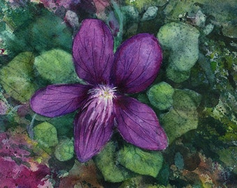 New Jersey Violet, Watercolor Original, State Flower, Purple