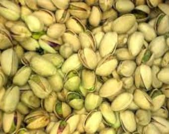 Pistachio (pistacia vera)10 fresh seeds from the US