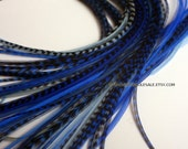Blue Hair Extensions Feather Hair Accessories Gypsy Blues Hair Feathers Blue Feather Extensions Blue Fashion Accessory Blue Gifts, 7