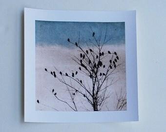 bird art, Archival reproduction, Doves Heart, 88 editions art