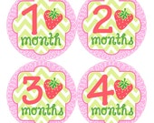 Baby Monthly Stickers FREE Baby Month Milestone Sticker Baby Month Stickers Baby Bodysuit Stickers Baby Girl Strawberry Pink Green Red 042G