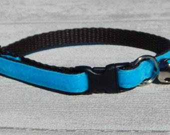 Blue Velvet Cat Collar