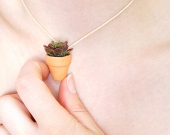 Mini Succulent Necklace - Hens And Chickens Necklace - Ajustable Flower Pot Necklace - Succulent Pendant - Gardening Necklace - Air Plant