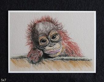 Silly Monkey Pastel Print, orangutan print, orangutan illustration, orangutan art, orangutan pastel