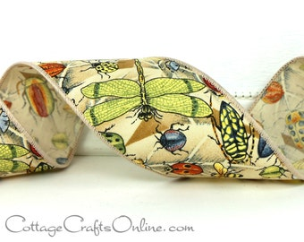 """Wired Ribbon Dragonfly and Bug Print, 2 1/2"""" width - TWO & 2/3 YARDS -  """"Bug's Day"""" , #704176,  Fall, Spring Craft Wire Edged Ribbon"""