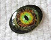 Glass eye-Raptor eye-dragon eye-30x40mm cabochon-oval cabochon-dinosaur eye