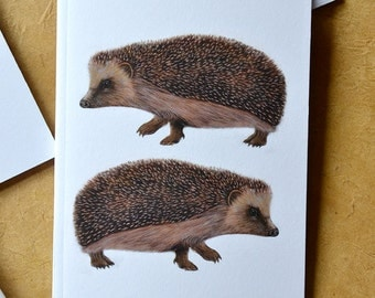 Hedgehog Notebook - Woodland Animal - Two Hedgehogs - A6 - Eco and Recycled - Compact Notebook