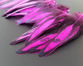 Bright Pink Feather Craft Supplies Pink Magenta Feathers for Crafts Vibrant Neon Colorful Craft Feathers Decorations Qty12
