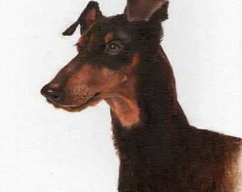 New Original Oil DOG Portrait Painting MANCHESTER TERRIER Art Puppy Artist Signed Artwork