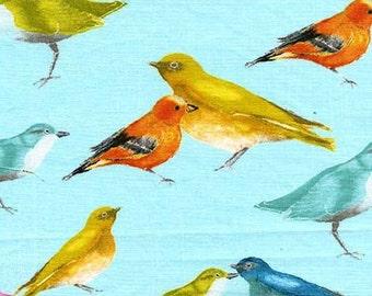 Flutter by Laura Gunn for Michael Miller - Birdies - 1/2 yard cotton quilt fabric