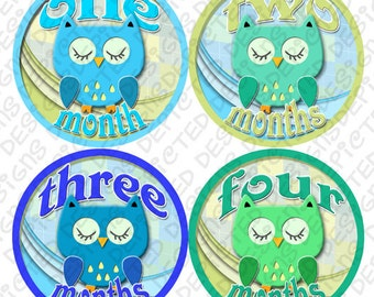 Bodysuit Romper Stickers - Monthly Baby Stickers - 1 to 12 months Baby Monthly Stickers - Month to Month Baby Stickers - BOYS OWLS