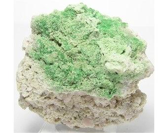 Garnet Druzy Green Grossular garnet on Matrix full of pale pink Garnet Crystals, Natural Mineral Specimen from Quebec,  Estate Collection