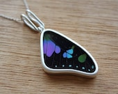 Real butterfly wing necklace - Real butterfly pendant - silver butterfly necklace - butterfly jewelry - Purple necklace - purple