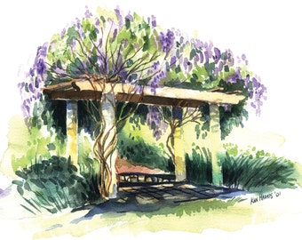 Note Cards / Box of 8 / Duo-Pack: Wisteria Arbor and Amber Rose