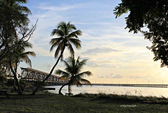 Palm Trees / Overseas Railroad Bridge / Photograph / Photo Card / Florida Photography