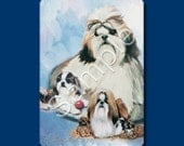 SHIH TZU - Deck of Playing Cards