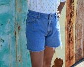 High Waisted Shorts, Vintage Size 10, Light Blue Shorts, Levi's Vintage Women's Shorts, 80's Shorts Ladies' Denim Shorts, BOHO, Hipster