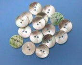 "12 Vintage 3/4"" Beautiful Opalescent Natural Shell Buttons. 2 Holes. Strong with Curved Surface. White and Green Backs. Item 3405S"