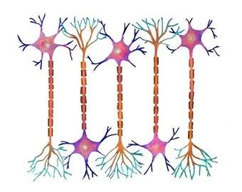 Neuron 6, Neurons, Science, science art, neurology, biology, biology art, science print, neuron art, watercolor art, watercolors, watercolor