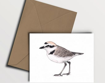 Snowy Plover Card - (4.25x5.5'') with kraft paper envelope